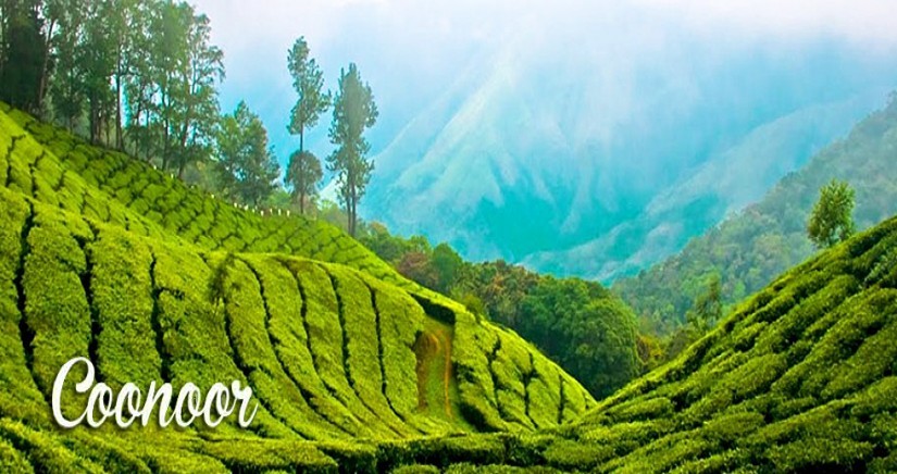 mysore-ooty-coonoor-tour-from-bangalore1.png