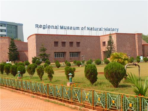 Regional Museum of Natural History
