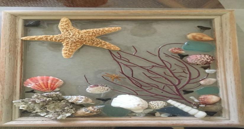 sea-shell-museum8.jpg